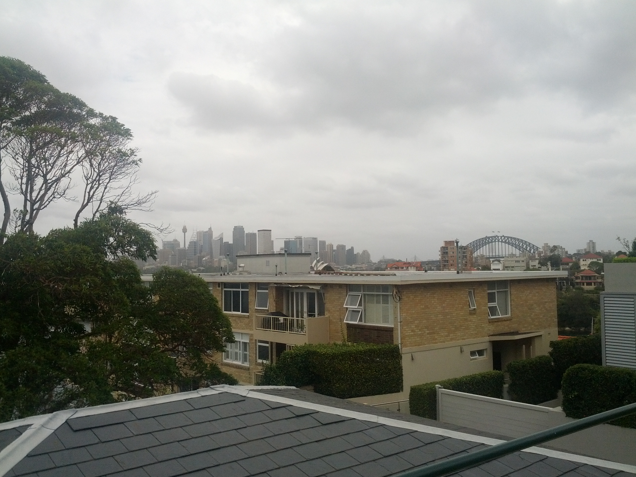 Looking out back towards Sydney