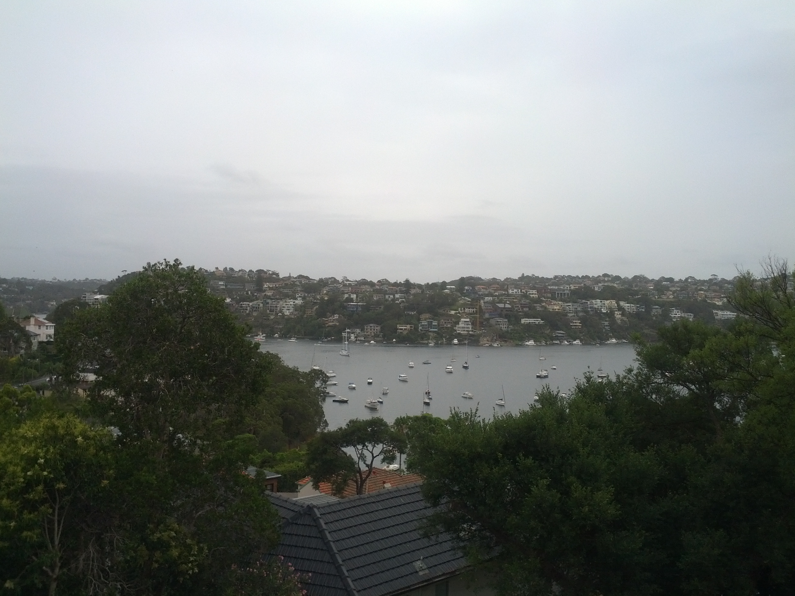 Walking down towards Spit Point Bridge. Just about every cove I see has a marina situated in it, must be almost as many boats as cars in Sydney.