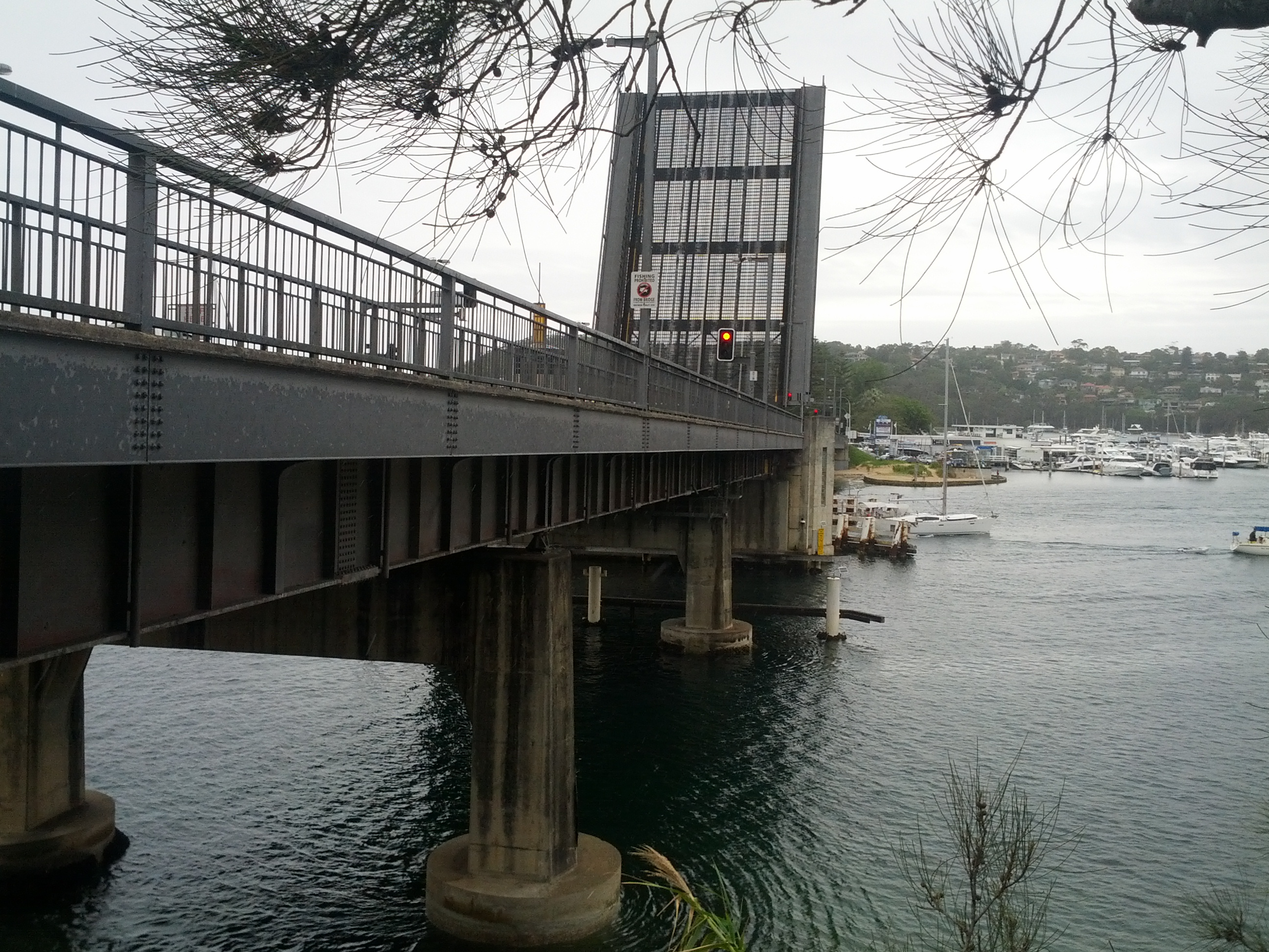 I fucking love bridges!