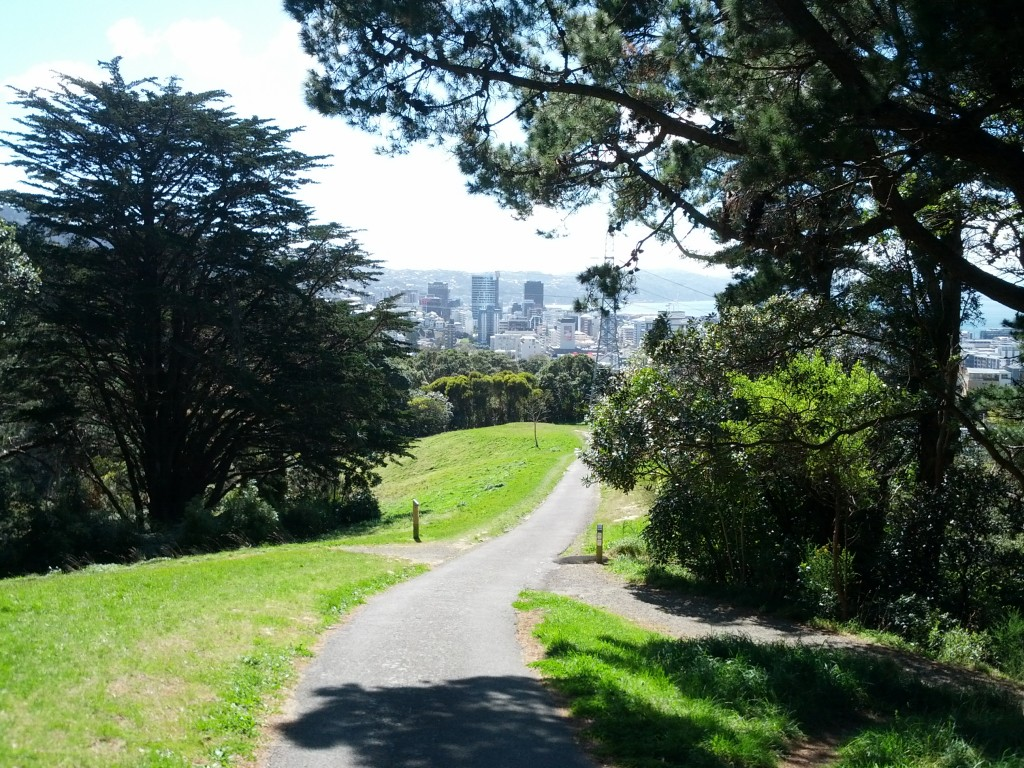 Wellington CBD from  Central Park.