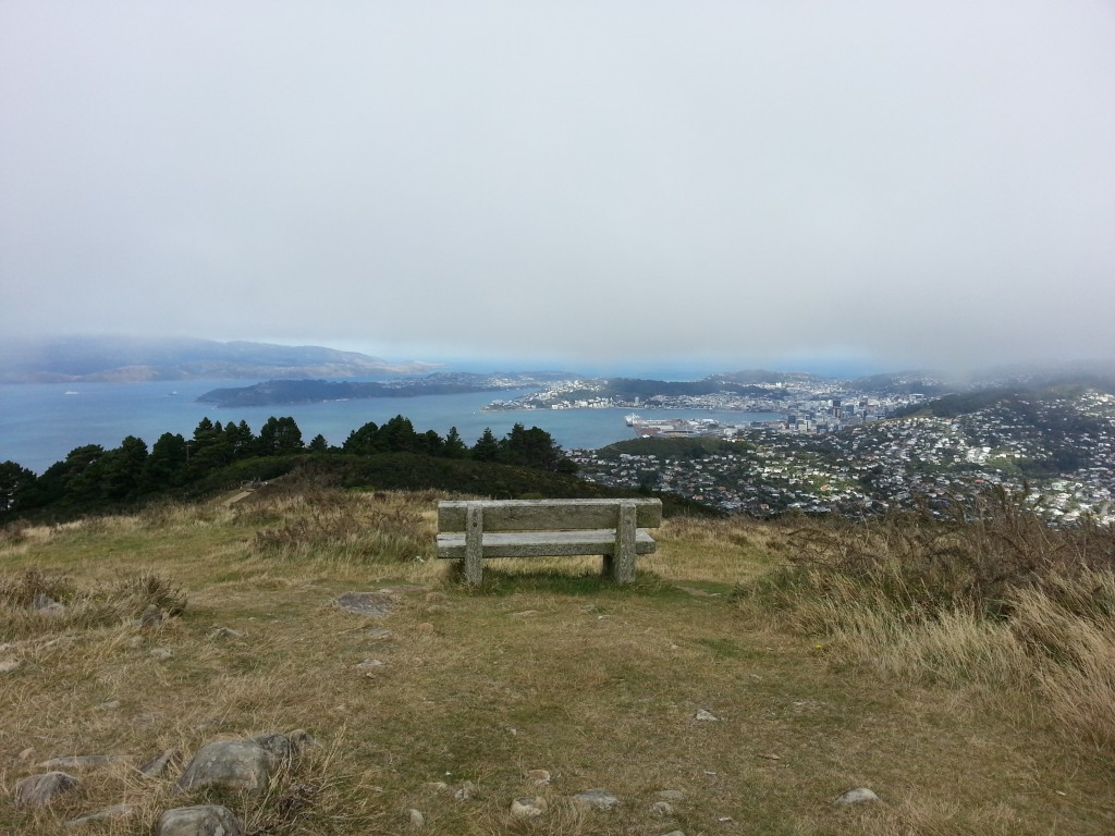 Wellington CBD from Mt Kaukau