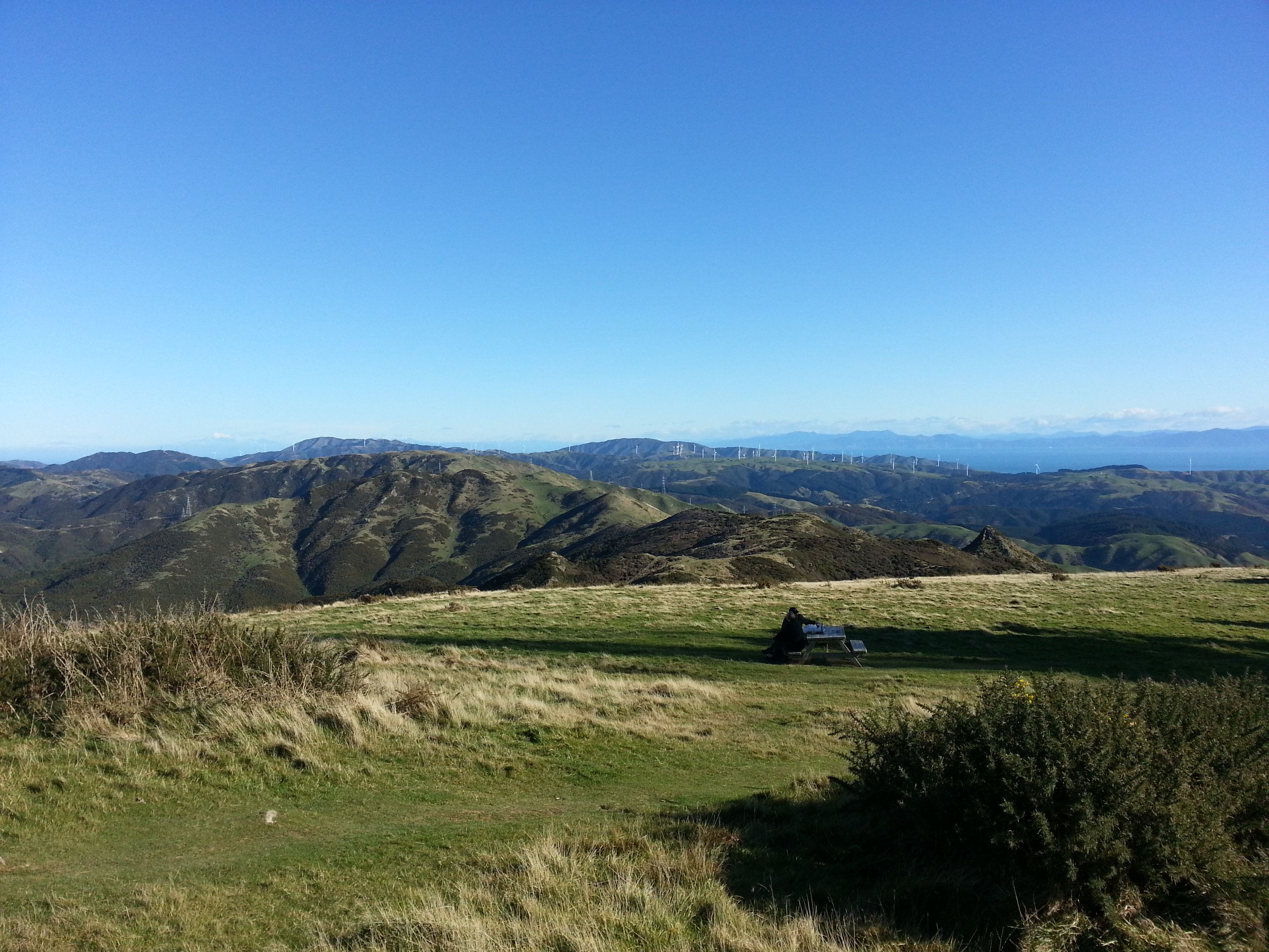 Up Mt Kaukau