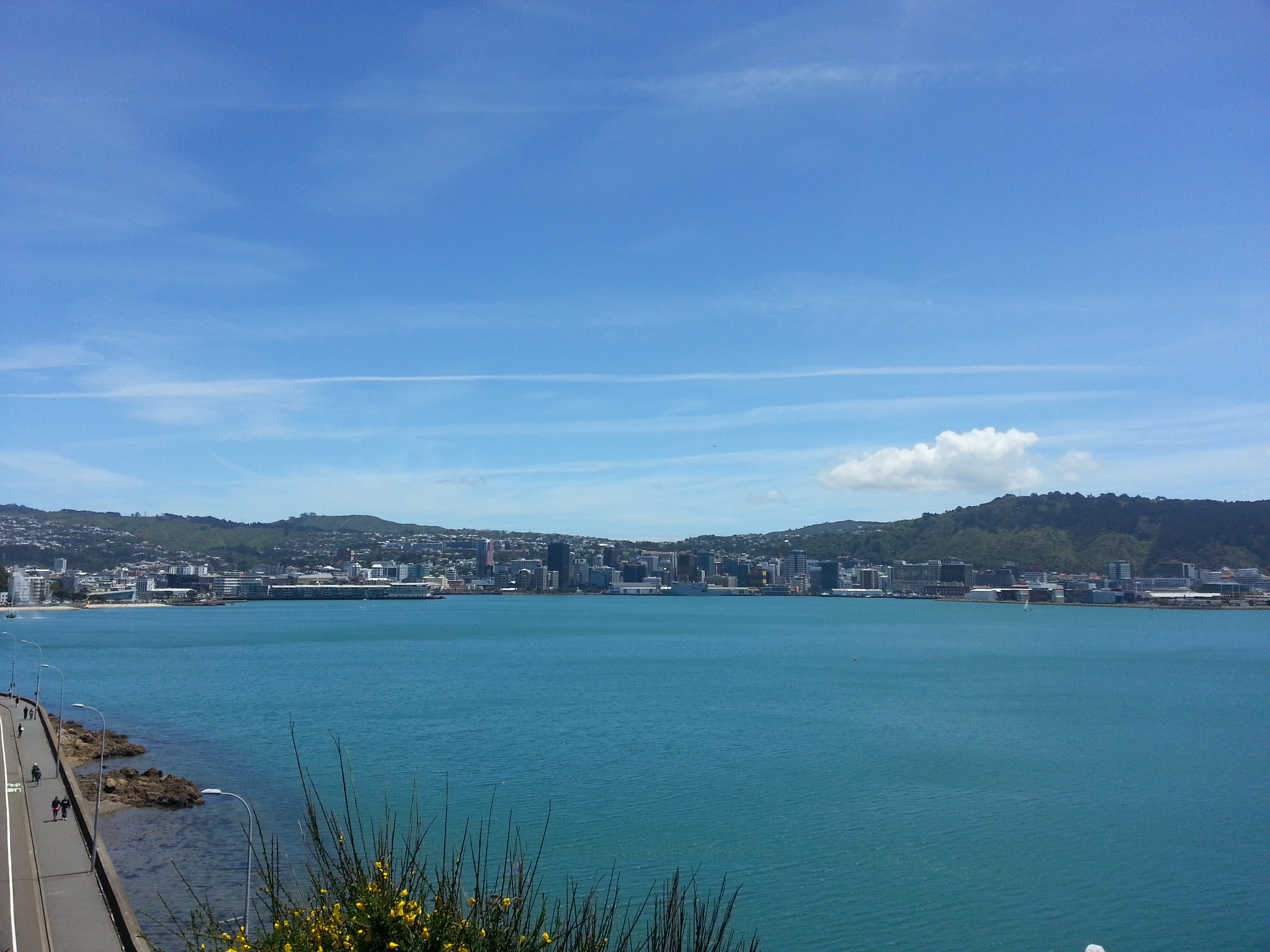 Looking back at the CBD and the port from Roseneath